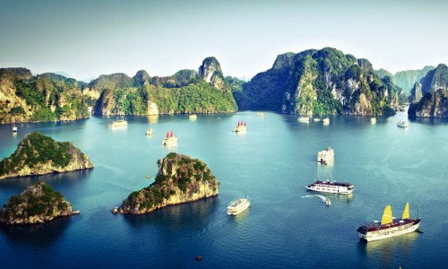 Tour Bus For Sale >> Halong Bay Tours – Freedom Tour
